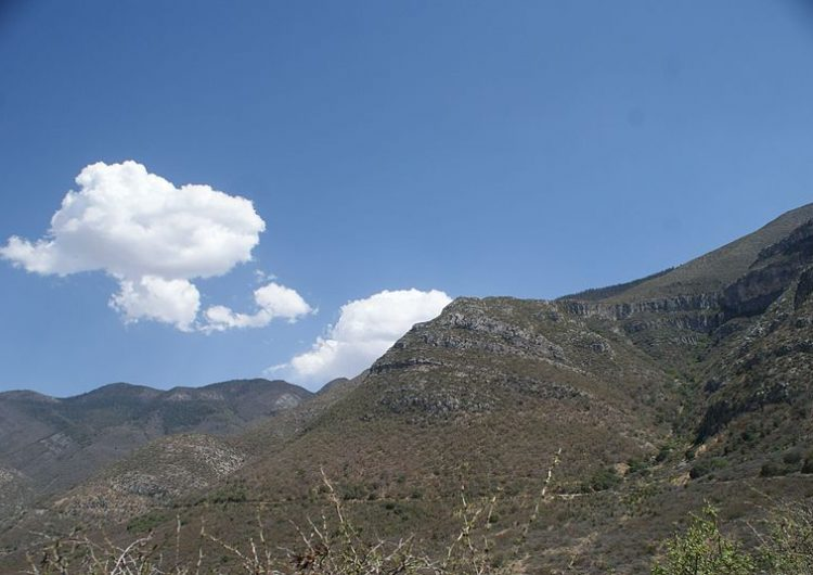 Se desata nuevo incendio en la sierra de Coahuila