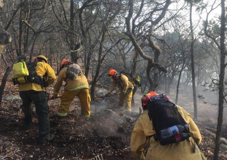 Incendios forestales en Guanajuato han afectado 21 mil hectáreas