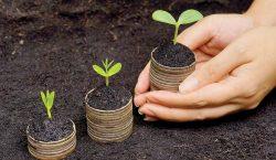 Fundaciones empresariales: un agente de cambio en México