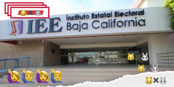 Sanciones no preocupan a los candidatos faltistas a debates del IEEBC