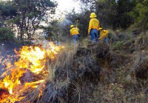 Suspenden clases en municipios de Oaxaca por incendios forestales