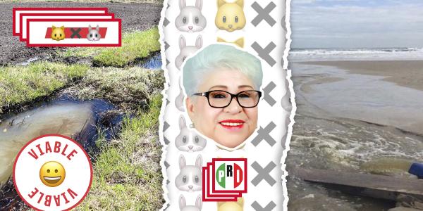 Aguas negras de Tijuana llegan a Playas de Rosarito, pero una candidata a la alcaldía quiere impedirlo