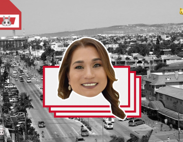 Regularización de tierras para el 5to municipio, promete candidata PRD