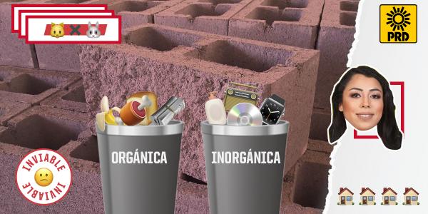 Candidata quiere que separes tu basura orgánica e inorgánica, pero sigue pendiente su recolección