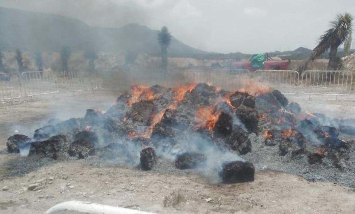 Destruyen 3 toneladas de mariguana en Saltillo; valían 2 mil mdp