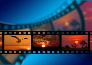 ¿Eres ecofrendly? ¡Ve al Festival de Cine del Medio Ambiente!