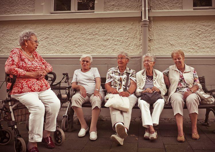 Un taller de arte en macetas para motivar a los adultos mayores