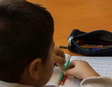 Intereses políticos y resultados a corto plazo impiden mejora educativa