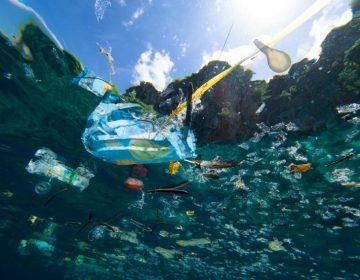 """Detectan una nueva """"isla"""" de desechos plásticos en el mar Mediterráneo"""