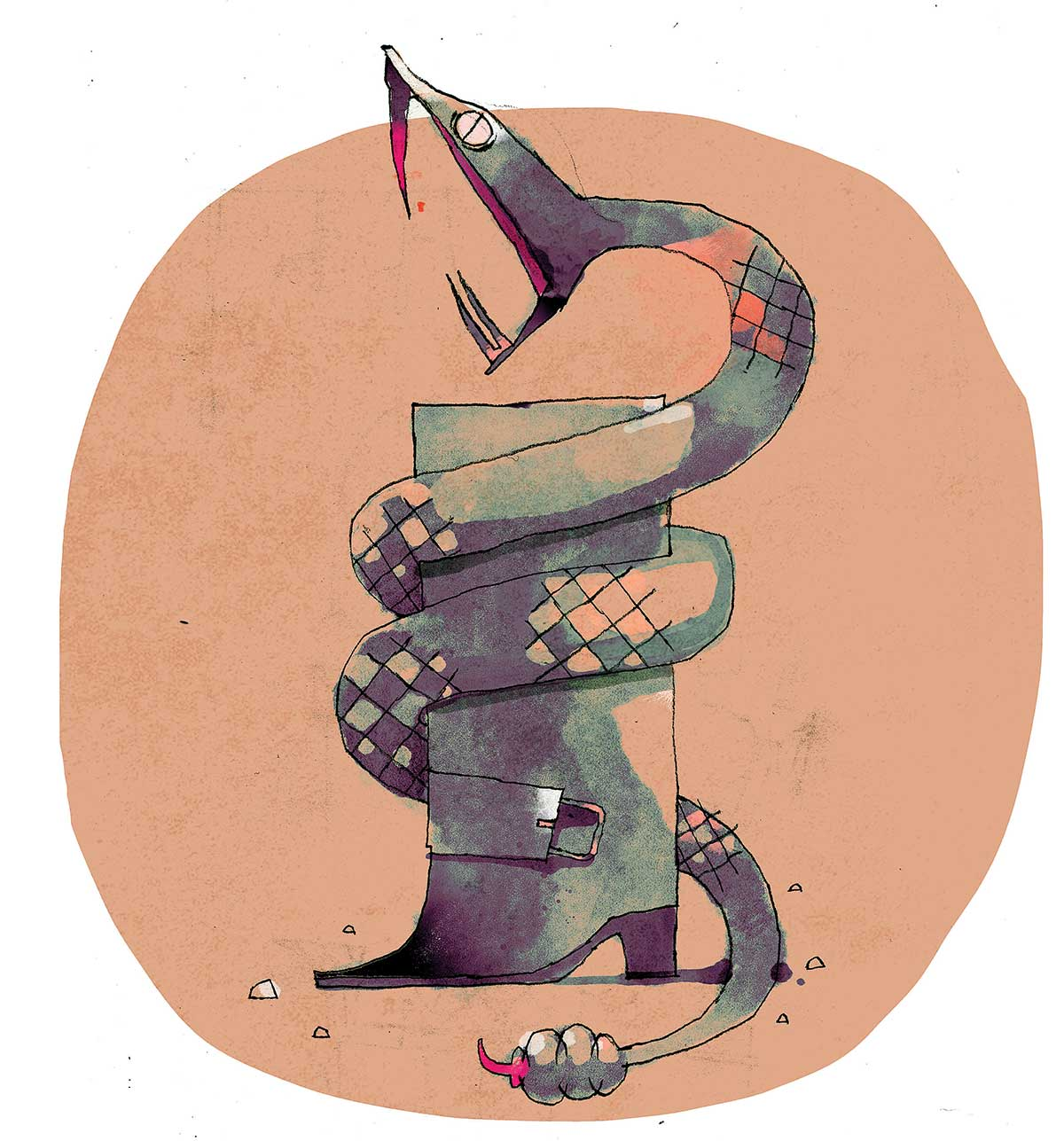 ilustrador-Betteo