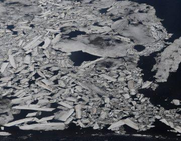 """Colapsos, calor y desplazados: Alertan por la """"amenaza a la humanidad"""" del cambio climático"""