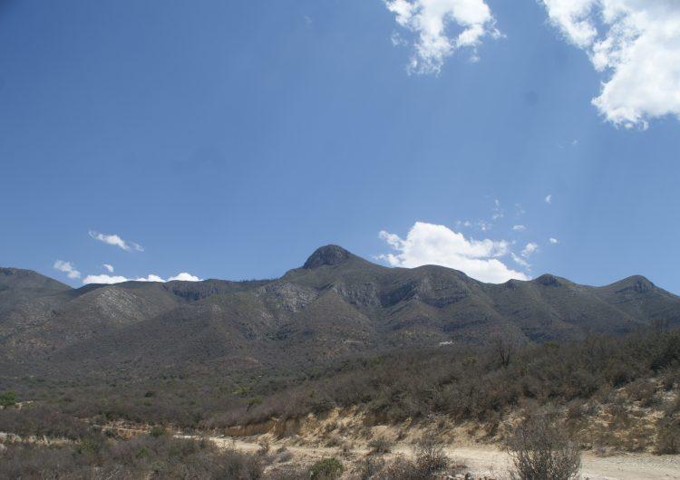 Acuerdos y propuestas para un Coahuila más verde