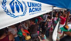 Desplazados en el mundo rompen récord: llegan a 70.8 millones…