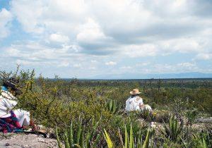 Peregrinar para sobrevivir y preservar las zonas sagradas de México
