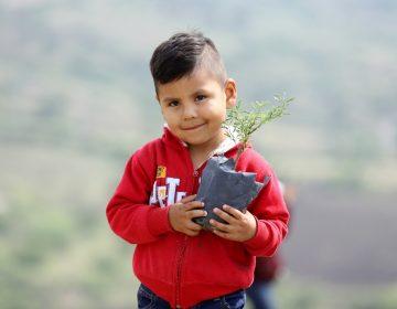 Plantan más de 2 mil árboles en puntos estratégicos de León