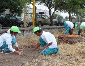 Realiza Veolia reforestación de árboles por el Día Mundial del Medio Ambiente