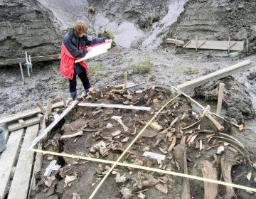 """Científicos descubren a una milenaria población """"perdida"""" en Siberia"""
