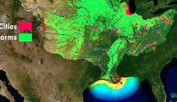 """Qué es la """"zona muerta"""" en el Golfo de México…"""