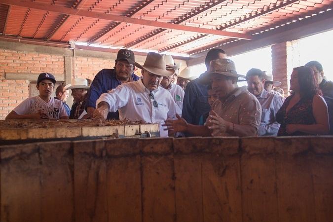 Asegura Orozco que Aguascalientes conservará denominación de origen del mezcal