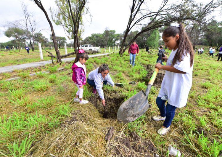 Plantan 500 árboles en La Pona