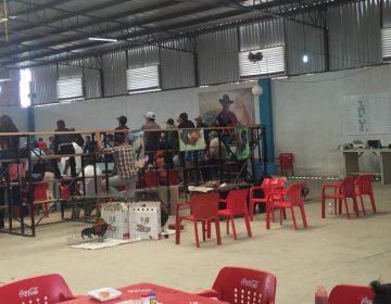Clausuran palenque clandestino en comunidad de Los Arellano