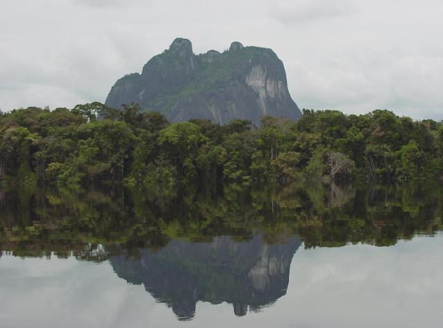 Opinión | Ciudadanía, Florestanía: la Amazonia, titular de derechos