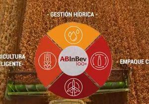 AB InBev, una compañía cervecera con objetivos sustentables