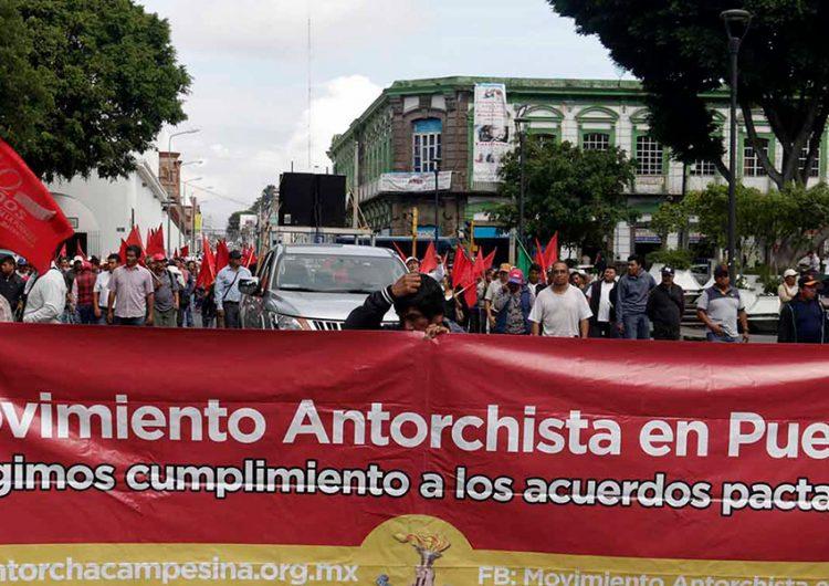 Diputada señala que interés de Antorcha Campesina por ser partido político no afecta al PRI