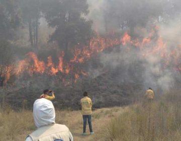 Se han registrado 347 incendios forestales en Puebla en lo que va del año