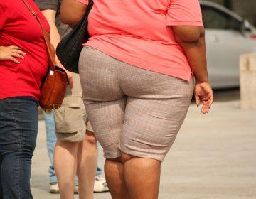 ¿El medio ambiente hace que subas de peso? Esto dice la ciencia