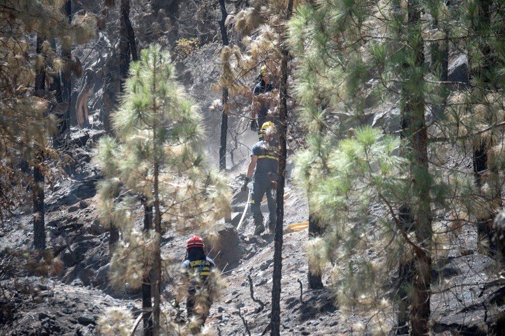 España-incendio-forestal-Gran-Canaria
