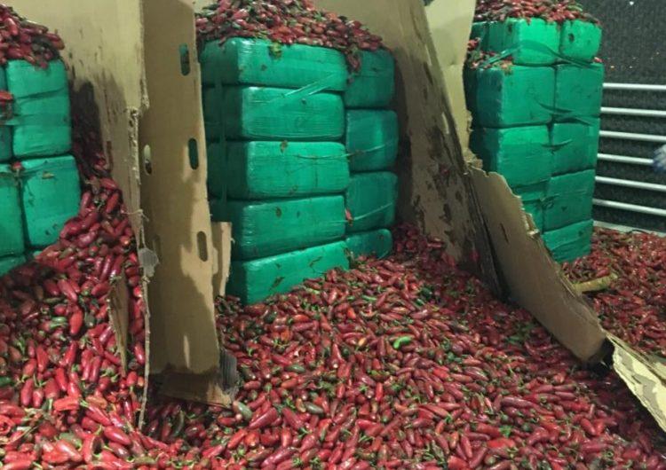 Incautan casi cuatro toneladas de marihuana en chiles jalapeños