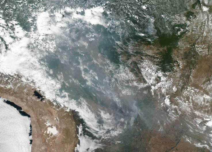 """Cómo ayudar a la Amazonia en un momento en que los incendios arrasan este """"pulmón de la Tierra"""""""