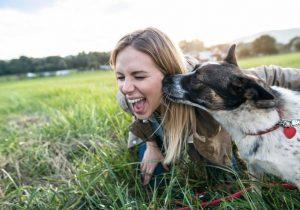 Ejercicio, buena alimentación y salud cardiaca: los beneficios de tener un perro según científicos