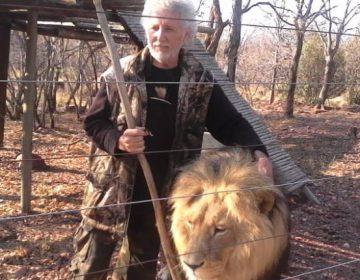 Hombre es asesinado por sus propios leones en cautiverio