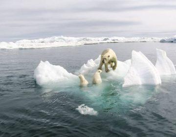¿El cambio climático es una amenaza importante? Más del 70 % de los republicanos piensa que no
