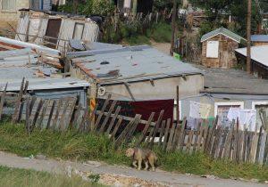Estas son las precarias condiciones de millones de viviendas en Guanajuato
