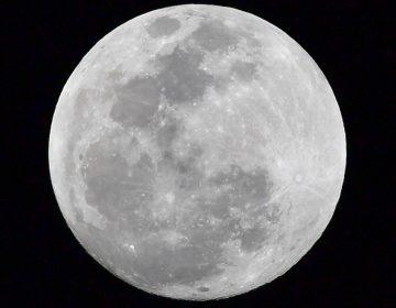 """El rover chino Yutu-2 encuentra una extraña sustancia """"parecida a un gel"""" en la superficie de la Luna"""