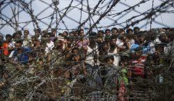 """Rohinyás de Birmania viven bajo la amenaza de un """"genocidio"""",…"""