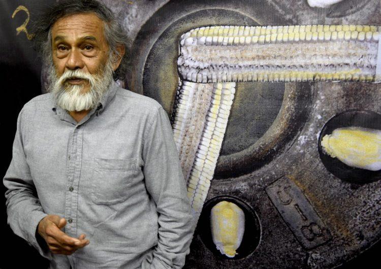 Muere Francisco Toledo, el artista de colores, insectos y papalotes