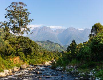 Caminos ocultos: senderos de todo el mundo