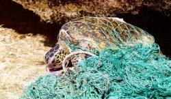 14 imágenes que muestran el impacto del plástico en los…