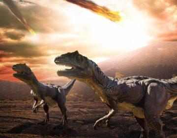 Tsunami y oscuridad: Lo que sucedió el día en que el asteroide que extinguió a los dinosaurios golpeó la Tierra