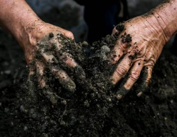 La crisis climática reduce la capacidad del suelo de absorber agua