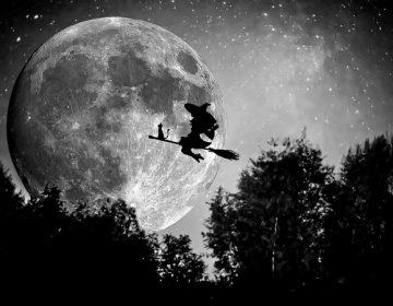 Opinión | El retorno de los brujos