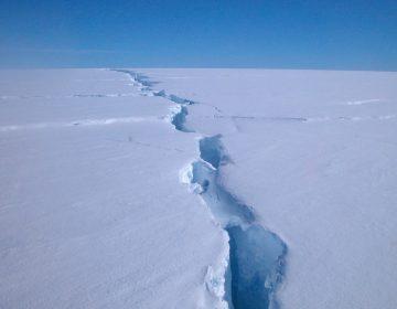 Se desprendió el iceberg más grande de los últimos 50 años en la Antártida