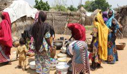 Los abortos clandestinos se disparan en Nigeria por conflicto con…