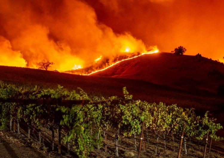 Incendios forestales en California dejan 2 mil evacuados y 190 mil personas sin luz eléctrica