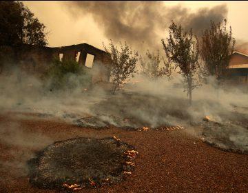 Miles abandonan Los Ángeles por incendio, incluidos LeBron James y Schwarzenegger