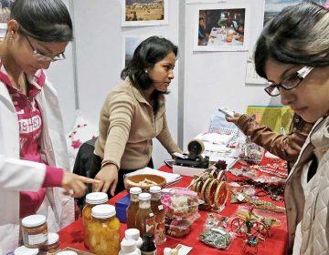 Piden al gobierno apoyar a jóvenes emprendedores